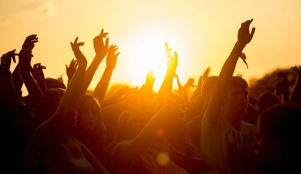 Festival Fever – The Best of a Great Bunch