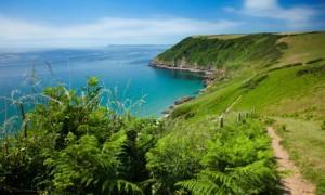 Country Diary : Coastal path at Lantic Bay near Polruan in Cornwall